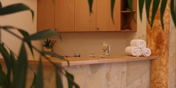 Privátní wellness i polopenze v luxusní Rezidenci Vogelsang v krajině Kašperských Hor/Šumava - Kašperské Hory
