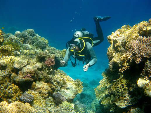 Kurz potápania v centre Academia Aquatica