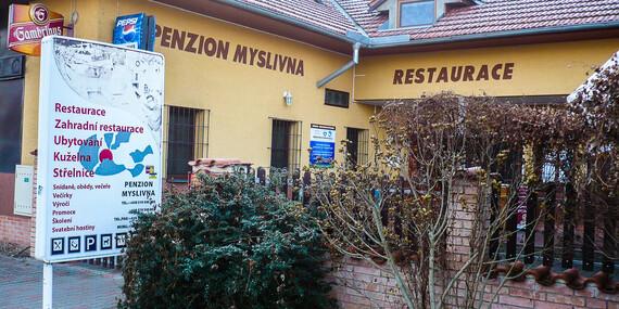 Pobyt kousek od zámku v Penzionu Myslivna v Lednicko-valtickém areálu s polopenzí a vínem/Jižní Morava - Lednice