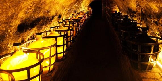 Výlet do miest, kde aj víno má svoju dušu: Pobyt vo Vinárstve Lintner na Morave a degustácia s neobmedzenou konzumáciou vína/Česko - Južná Morava - Znojmo