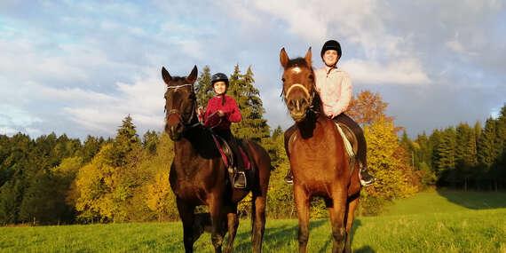 Jazda na koni alebo v konskom voze v Strážovských vrchoch/Považská Bystrica