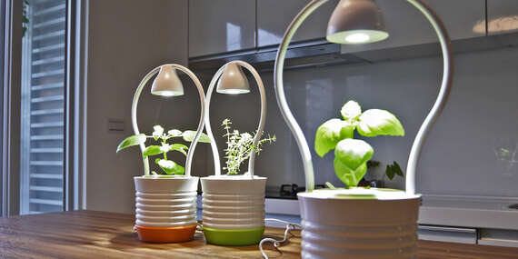Designový květináč ONE s vlastním LED osvětlením pro podporu růstu rostlin/ČR