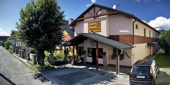 Penzión Plesnivec / Poprad