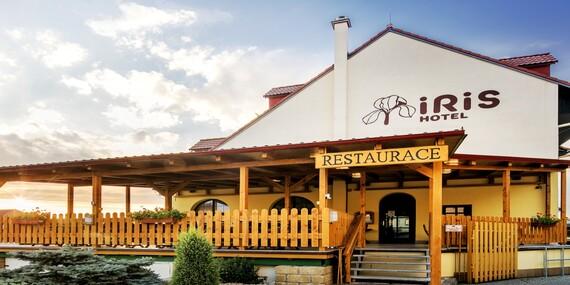 Chráněná krajinná oblast Pálava a relaxační pobyt ve wellness hotelu Iris*** s vybranými procedurami, vířivkou a polopenzí / Jižní Morava - Pavlov
