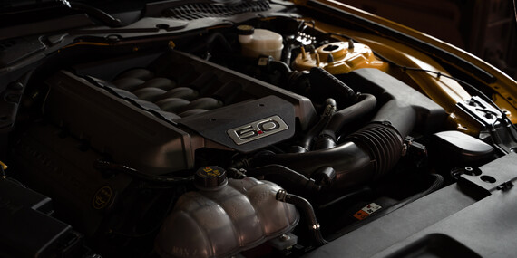 Zážitková jízda včetně paliva v nadupaném sportovním voze Ford Mustang GT jako spolujezdec nebo řidič/Olomouc, Přerov