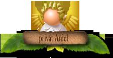 Aniel Privat
