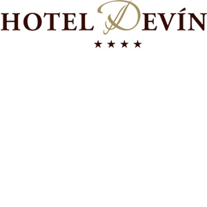 HOTEL DEVÍN - Relax centrum hotela