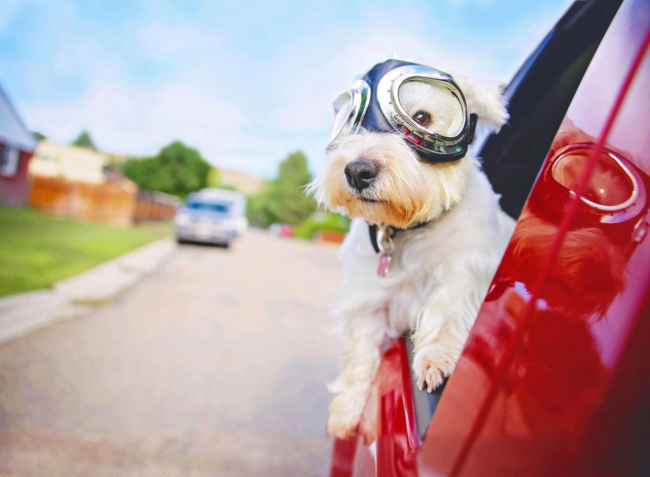 Kondičné jazdy v autoškole - získaj opäť sebaistotu a odvahu š...