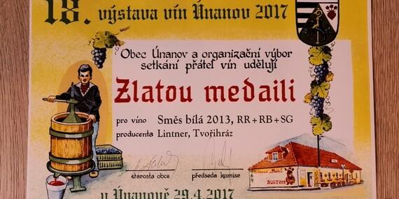 Pobyt s degustací a neomezenou konzumací vína ve Vinařství Lintner na Znojemsku/Jižní Morava - Znojmo