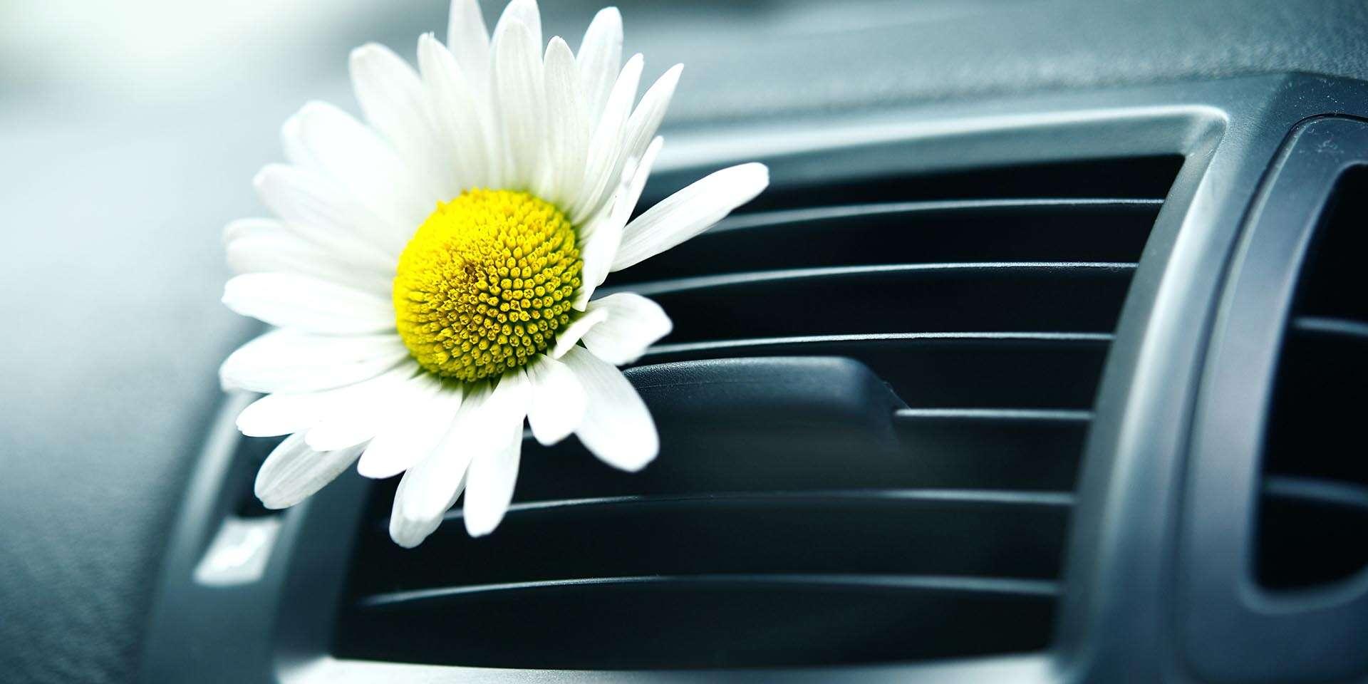 Čistenie interiéru ozónom alebo plnenie klimatizácie auta bez dop...