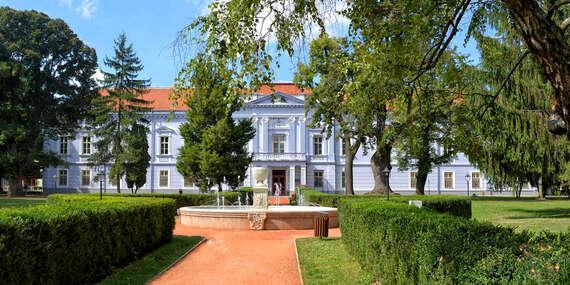 Relax s wellness v jedinečném prostředí Zámku Mojmírovce **** jen 5 min. autem od Thermalpark Nitrava/Nitra - Mojmírovce