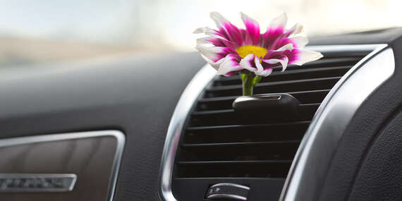 Servis a plnenie klimatizácie, dezinfekcia interiéru vozidla – ozón, ktorý zničí až 99 % vírusov a baktérií/Pezinok