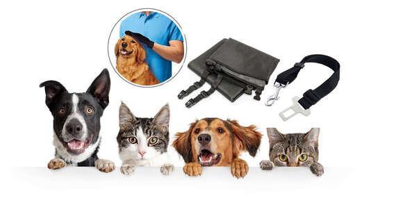 Výbava pre majiteľa psieho miláčika - rukavice na vyčesávanie srsti True Touch, ochranná deka do auta alebo bezpečnostný pás pre psa/Slovensko