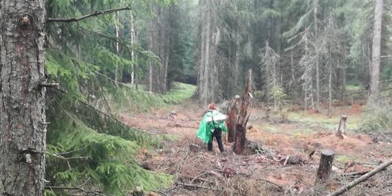 3 denní kurz přežití v přírodě pro dobrodruhy toužící po zážitcích a nových dovednostech/Labské pískovce, České Švýcarsko