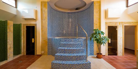 Privátní wellness i polopenze v luxusní Rezidenci Vogelsang v krajině Kašperských Hor / Šumava - Kašperské Hory