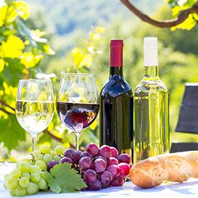 Vinařské pobyty