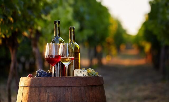 Výlet do miest, kde aj víno má svoju dušu: Pobyt vo Vinárstve Lintner na Morave a degustácia s neobmedzenou konzumáciou vína