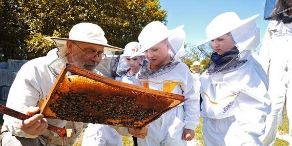 Zážitková návšteva včelej farmy s možnosťou výroby medových mydielok, ozdôb alebo sviečok z vosku/Choča pri Nitre