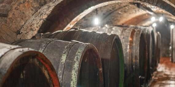 Posezení u vína i večerní degustace v Apartmánech nad sklepem ve Velkých Pavlovicích s platností do prosince 2020 / Jižní Morava - Velké Pavlovice