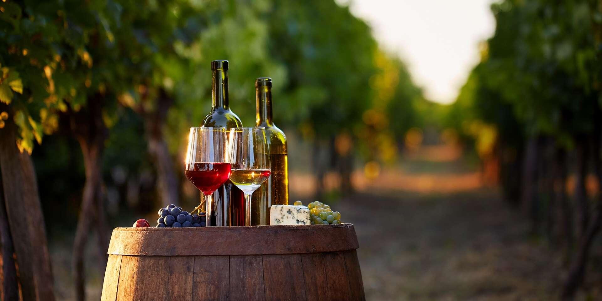 Pobyt s degustáciou a neobmedzenou konzumáciou vína vo Vinárstve Lintner na Znojemsku