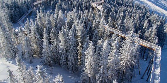Dovolenka pod Belianskymi Tatrami na skok od Chodníka korunami stromov - aj cez prázdniny / Ždiar - Belianske Tatry