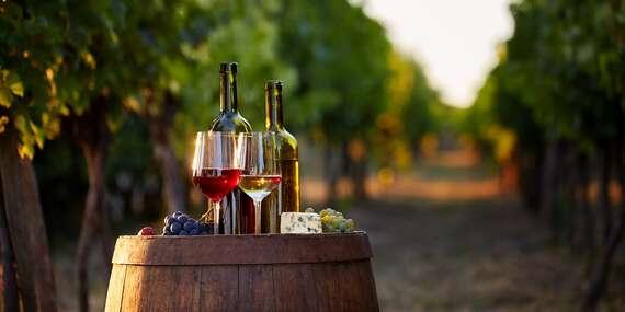 Pobyt s degustací a neomezenou konzumací vína ve Vinařství Lintner na Znojemsku / Jižní Morava - Znojmo