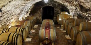 Privátna vínna cesta - svätojurské víno na jednom mieste