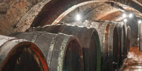 Neomezená konzumace vín a řízená degustace v Apartmánech nad sklepem ve Velkých Pavlovicích / Jižní Morava - Velké Pavlovice