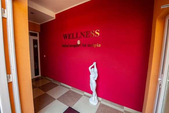 Neobmedzený wellness pobyt za super cenu a s dieťaťom zdarma v penzióne Viktória.
