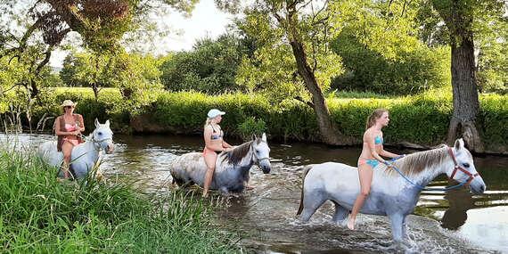 Letný detský tábor s jazdou na koňoch a zábavou v aquaparku / Laskár