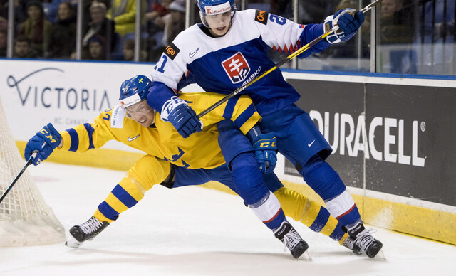 Autobusový zájazd na zápas na MS v hokeji Švédsko - Slovensko