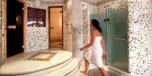 Medzi hlavné lákadlá hotela Dvořák patrí vlastný hotelový bazén, sauna či parný kúpeľ