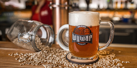 Prehliadka pivovaru WYWAR s degustáciou piva / Holíč