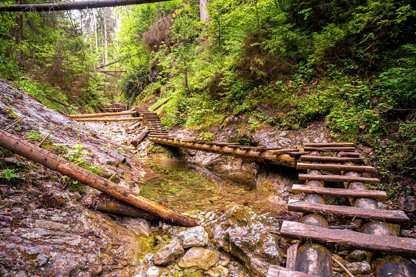 Pobyt v Spišskej Novej Vsi – vstupnej bráne do Slovenského raja