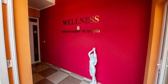 Neobmedzený wellness pobyt za super cenu a s dieťaťom zdarma v penzióne Viktória/Galanta