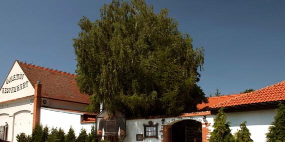Rudolfovo plato - delikátní výzva pro dva v Golemově restaurantu/Praha 8 - Březiněves