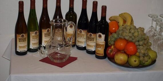 Neomezená konzumace vína s živou hudbou pro dva v penzionu V Zahraničí v Bořeticích s polopenzí/Jižní Morava - Kraví Hora - Bořetice