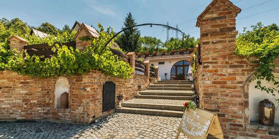 Jižní Morava v rodinném vinařství Krýsa s prohlídkou vinohradu, možností degustace, polopenzí a lahví vína jako dárek/Jižní Morava - Kostelec u Kyjova