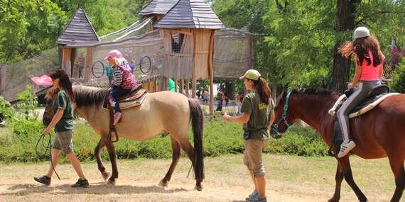 Denný tábor na celý týždeň – športový, s koníkmi, tanečný alebo florbalový / Bratislava