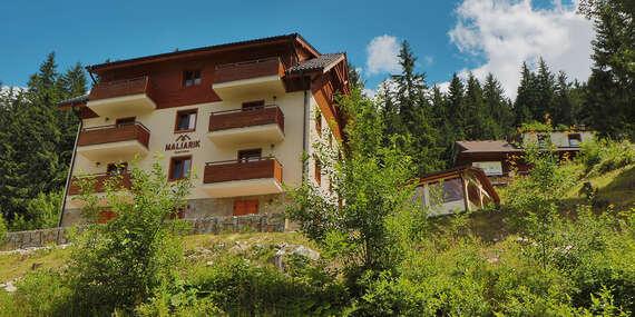 Apartmány Maliarik – oddych v srdci prírody Demänovskej Doliny priamo pri lanovke na Chopok / Nízke Tatry - Chopok