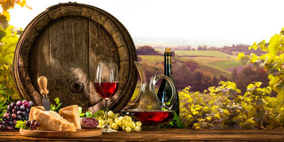Neobmedzená konzumácia vína, živá hudba a polpenzia pre dvoch v penzióne V Zahraničí v Bořeticích/Južná Morava - Kraví Hora - Bořetice
