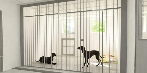 Tričká pre milovníkov zvieratiek – podporte skvelú myšlienku/Slovensko – Bratislava