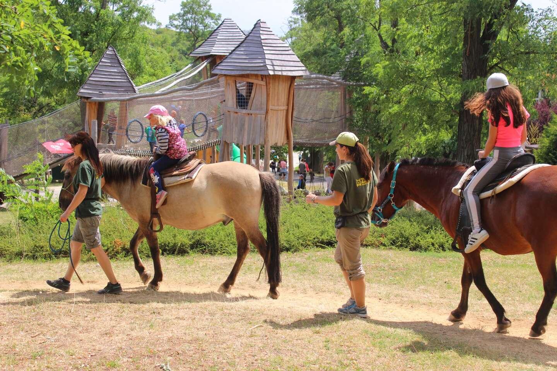Denný tábor na celý týždeň – športový, s koníkmi, tanečný alebo florbalový
