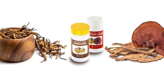Doplnky z tradičnej čínskej medicíny – huba reishi alebo kordyceps proti chrípke/Slovensko