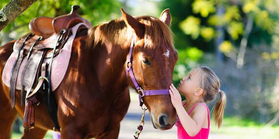 Lekcie jazdenia na koni s inštruktorom pre deti aj dospelých alebo ako teambuilding/Bratislava - Podunajské Biskupice