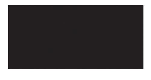 Hotel Lenart****