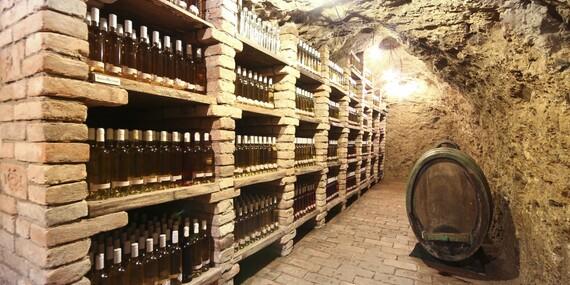 Vinařský pobyt na jižní Moravě v penzionu U Palečků s vinným sklepem, neomezenou konzumací vybraných vín s bohatým rautem a wellness/Jižní Morava - Zaječí