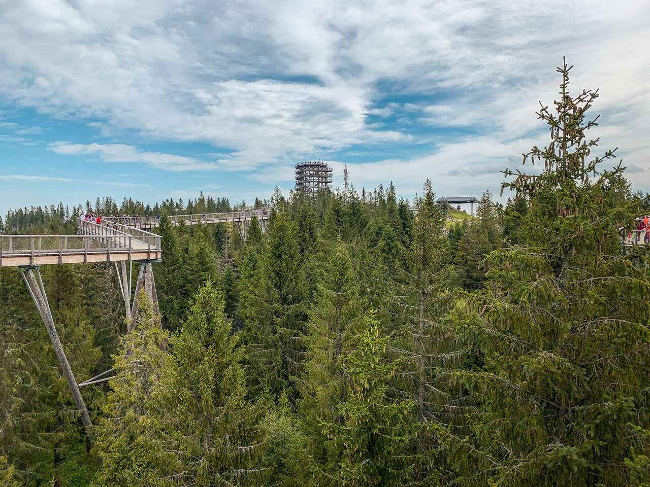 Leto s polpenziou vo Vile Panorama 2 km od Chodníka korunami stromov