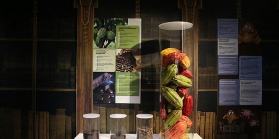 Zážitkový workshop v muzeu čokolády Chocotopia v centru Prahy s prohlídkou, ochutnávkou i výrobou vlastních čokoládových tabulek/Praha