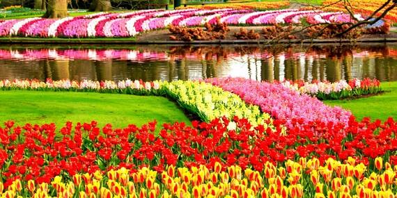 Poznejte Nizozemí: Amsterdam, květinový park Keukenhof a skanzen větrných mlýnů Zaanse Schhans/Holandsko - Amsterdam